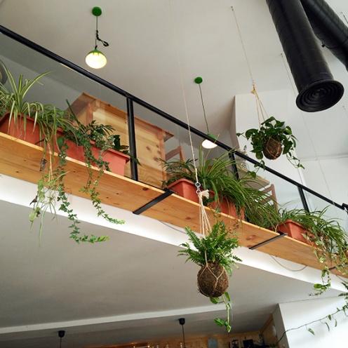 Café MENSSANA_2